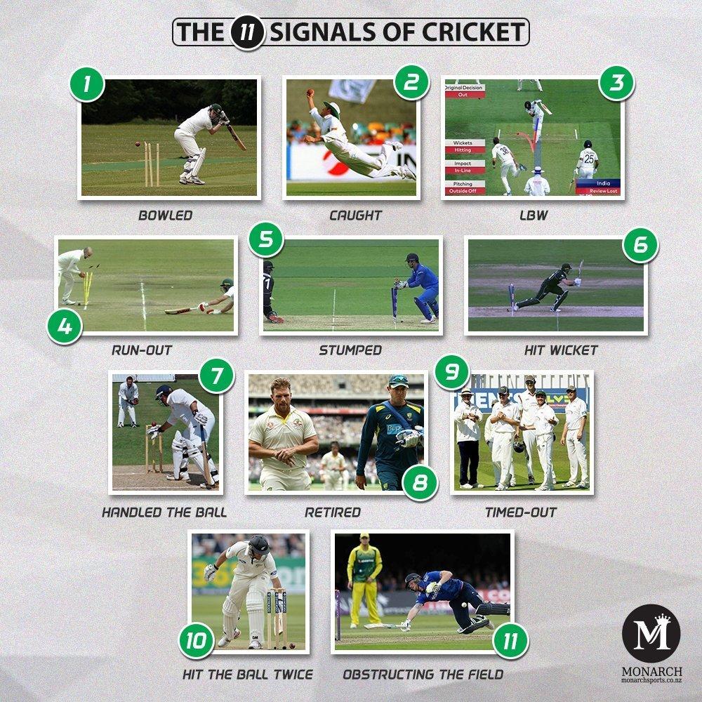Signals in Cricket